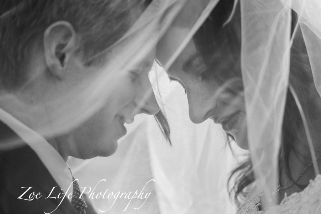 Wedding Photographer Veil Shot