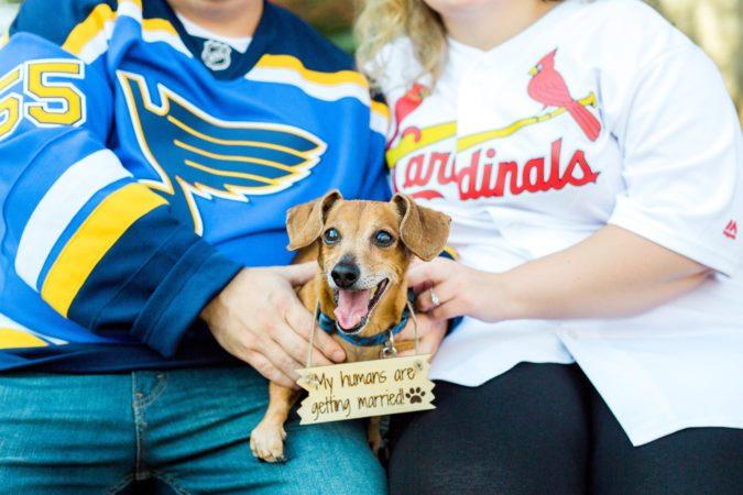 Saint Louis Cardinals and Blues Engagement Session