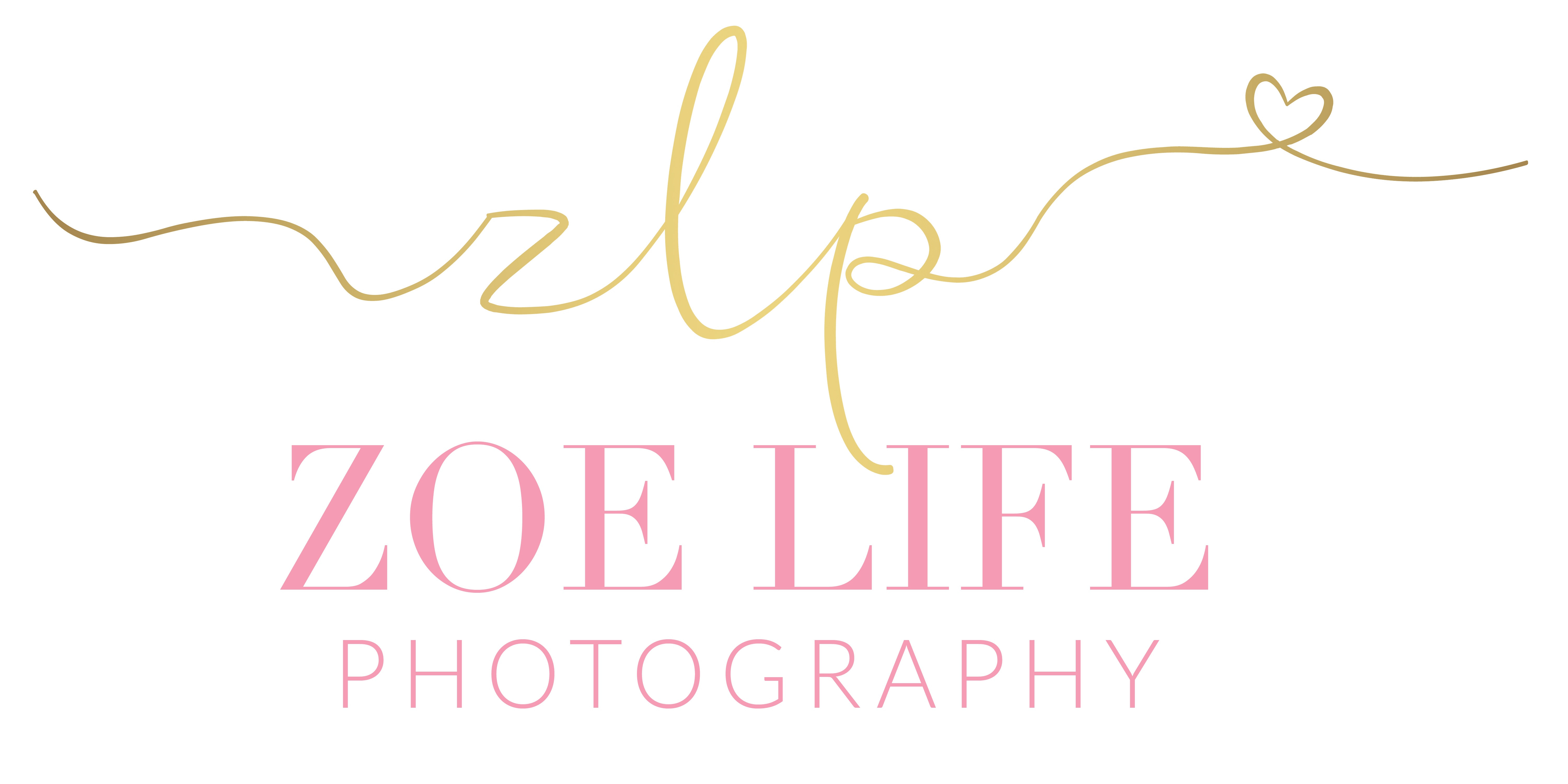 Nashville and St. Louis Wedding Photographer