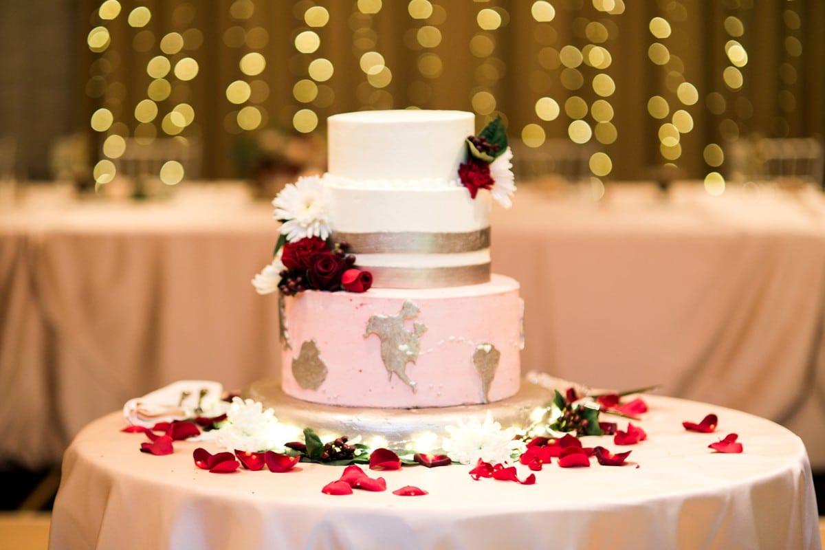 Westin Hotel Wedding Saint Louis Wedding Photographer