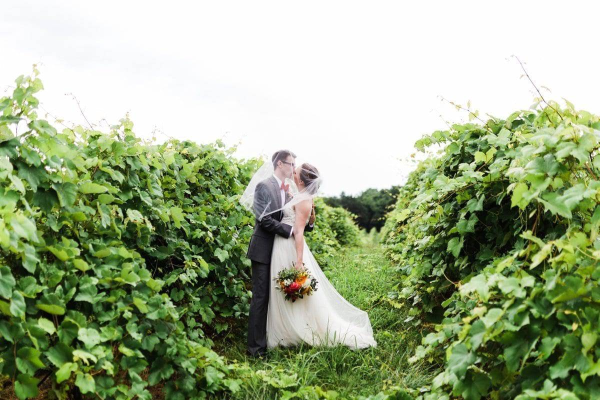 Chaumette Barn Winery Wedding_6572