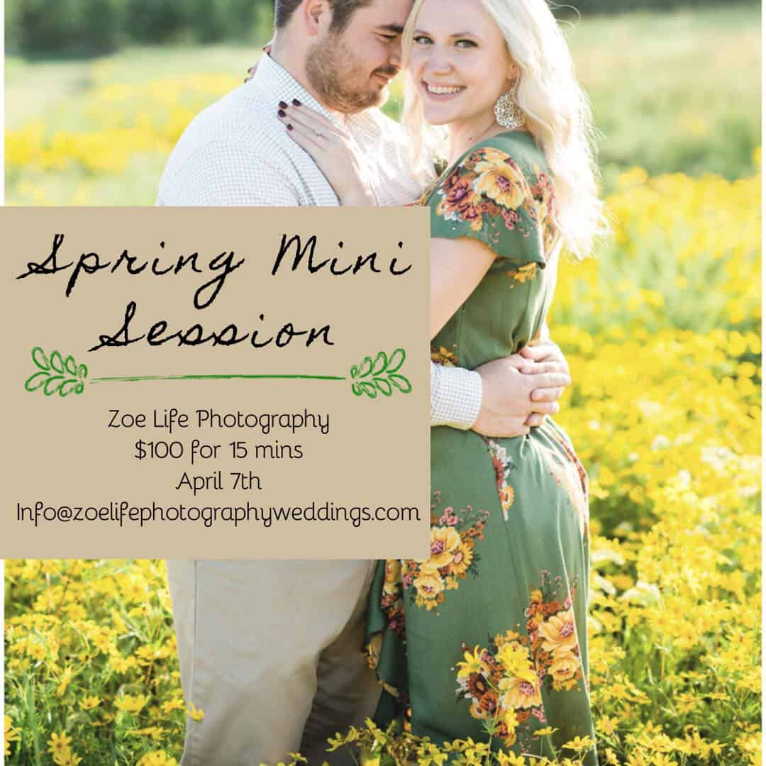 St. Louis Spring Mini Sessions 2019