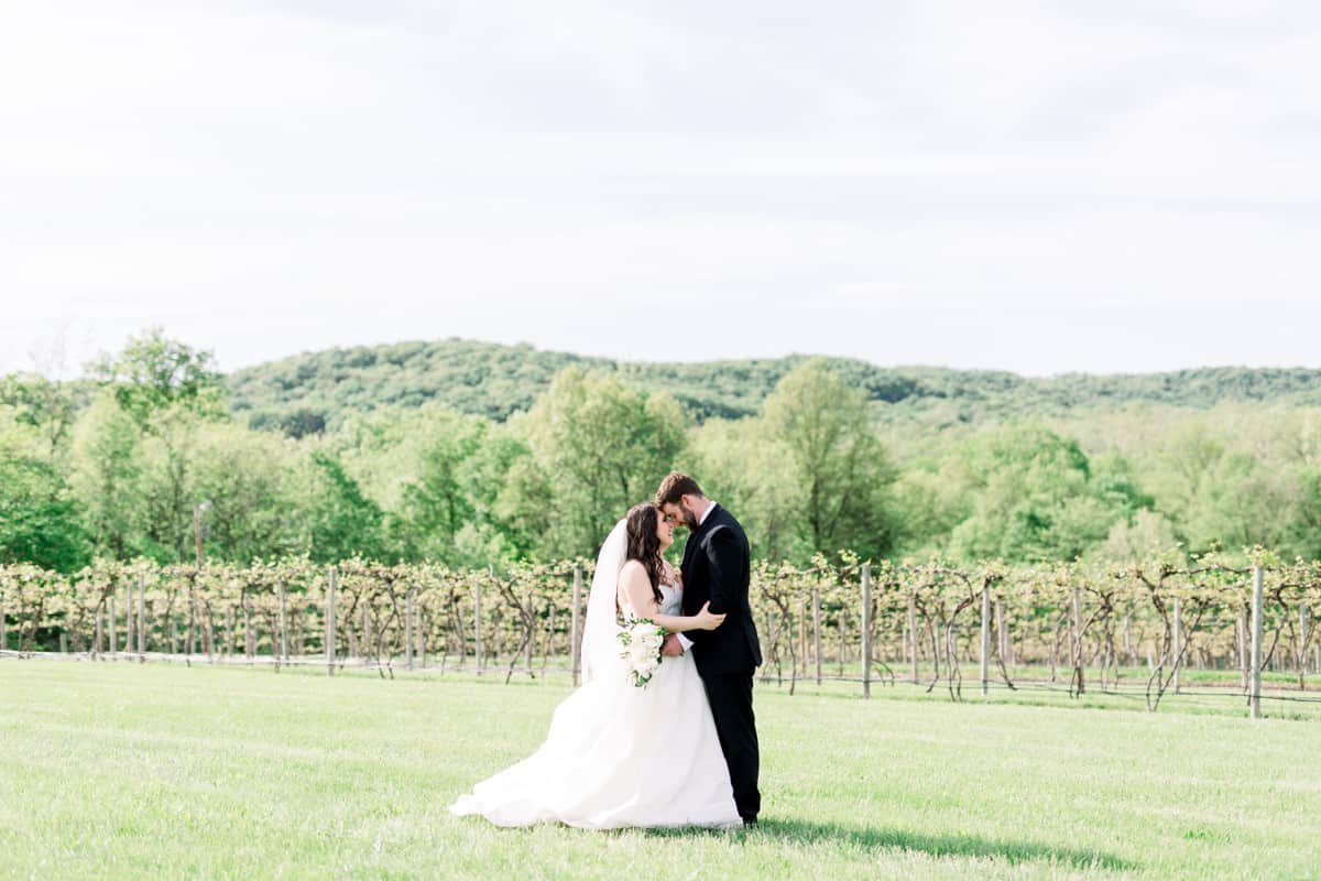 Noboleis Vineyards Wedding_0266